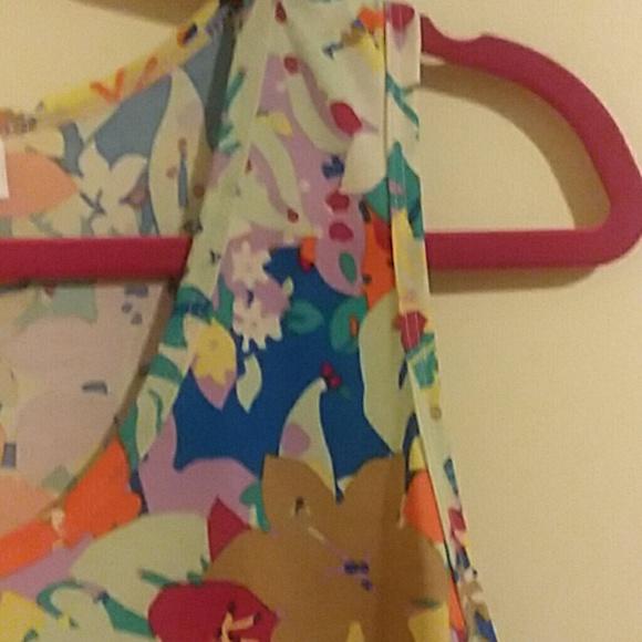 8196278fa55ca LuLaRoe Dresses   Skirts - 2XL Dani tank dress